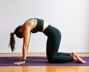 3 yoga poses for back pain  spinecare chiropractic