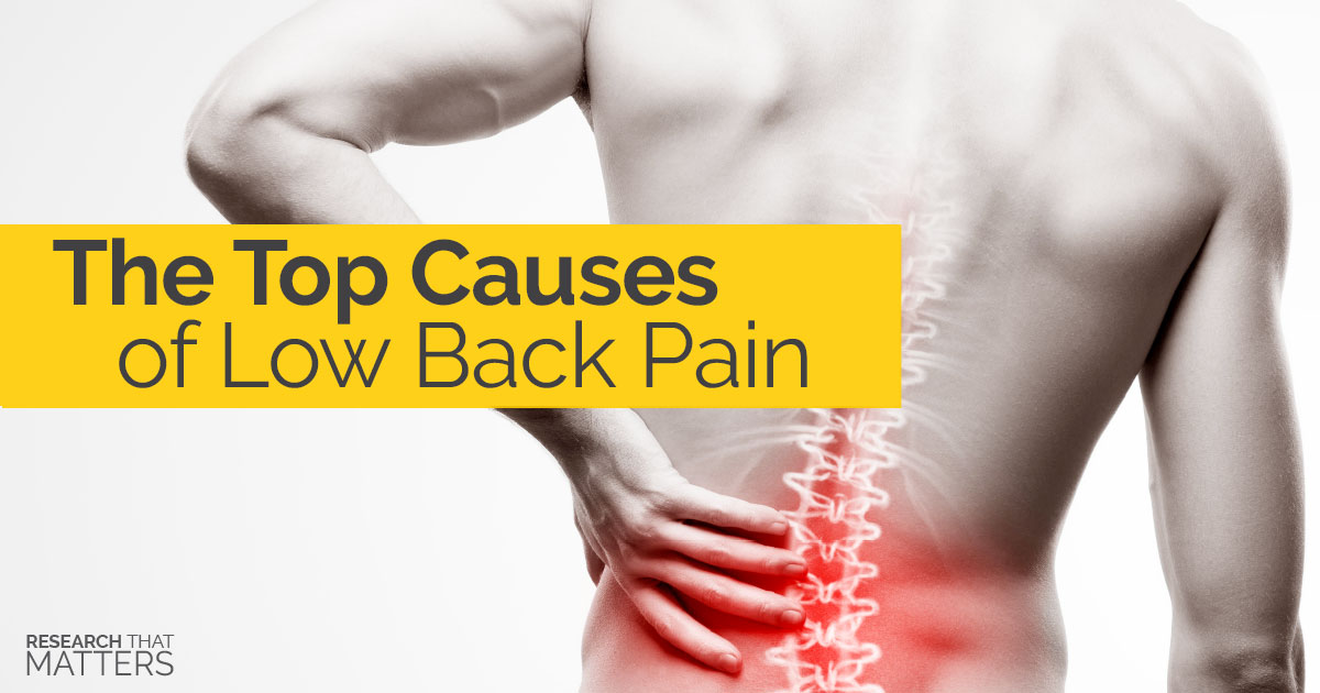 The Top Causes of Low Back Pain(b) (1)